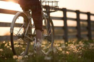Person fährt mit Fahrrad an einer Weide entlang